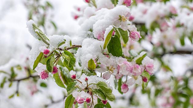 Kühler Frühlingsstart