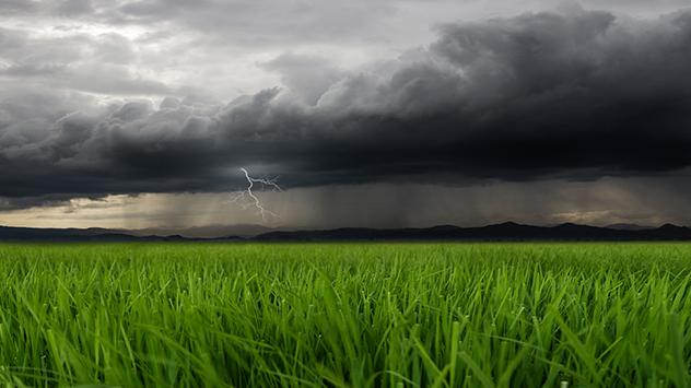 Gewitterwolken über einer Wiese