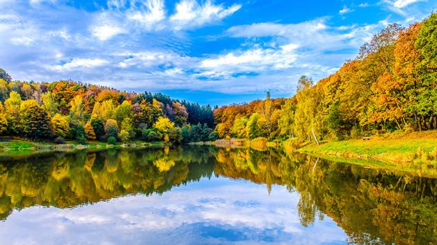 Die Temperaturen sinken und der niedrige Sonnenstand taucht kunterbunte Blätter in ein leuchtendes Farbenmeer.