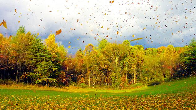 Ab Oktober nehmen Wind und Stürme zu. Der Grund sind die jährlich auftretenden Temperaturunterschiede zwischen den nördlichen und südlichen Ländern.